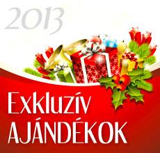 2013 Karácsonyi ajándékok