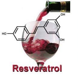 GERE szőlőmag termékek és a tudomány