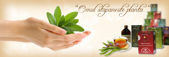 Aroma Plant termékek.