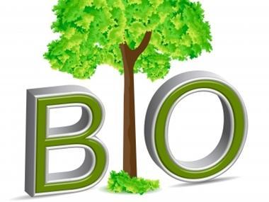 Mitől BIO a biokozmetikum?