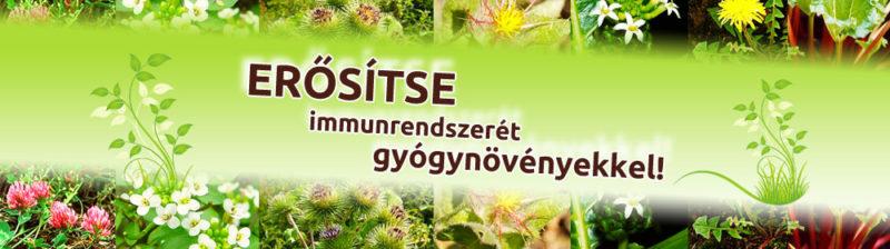 erositse-immunrendszeret