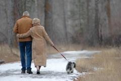 Kutyatartással az egészségesebb életért!