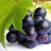 szőlőszemek