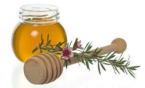 Orvosi méz, a természetes sebgyógyító