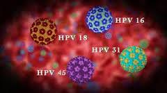 A HVP fertőzés shiitake gombával gyógyítható?