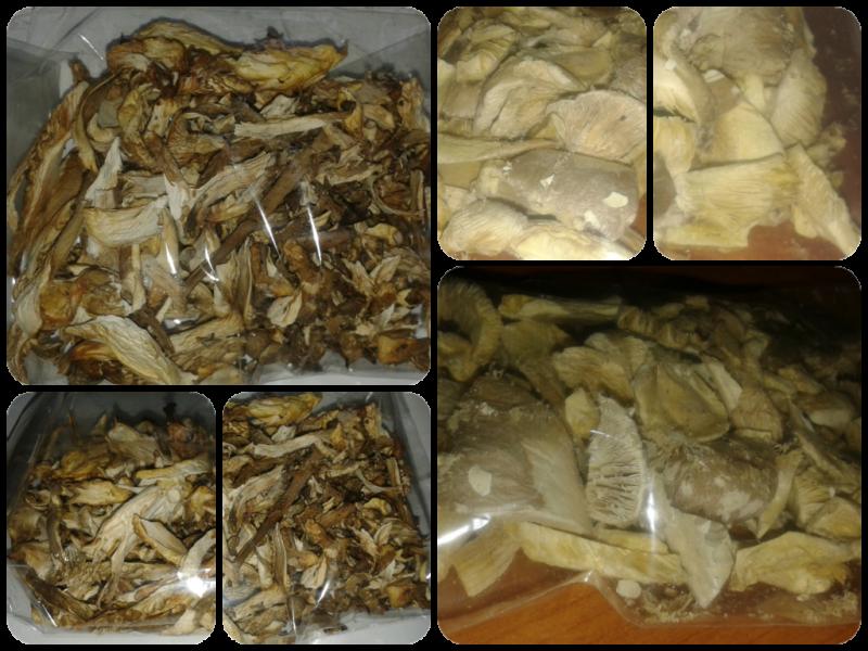 Levegőn szárított gombák - Liofilizált gombák