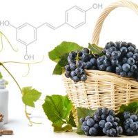 resveratrol-rak-megelőzés