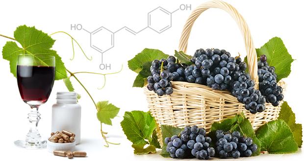 Milyen humán vizsgálatok bizonyítják a resveratrol hatását?