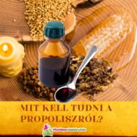 Mit kell tudni a propoliszról