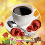 BIO ganodermás kávék